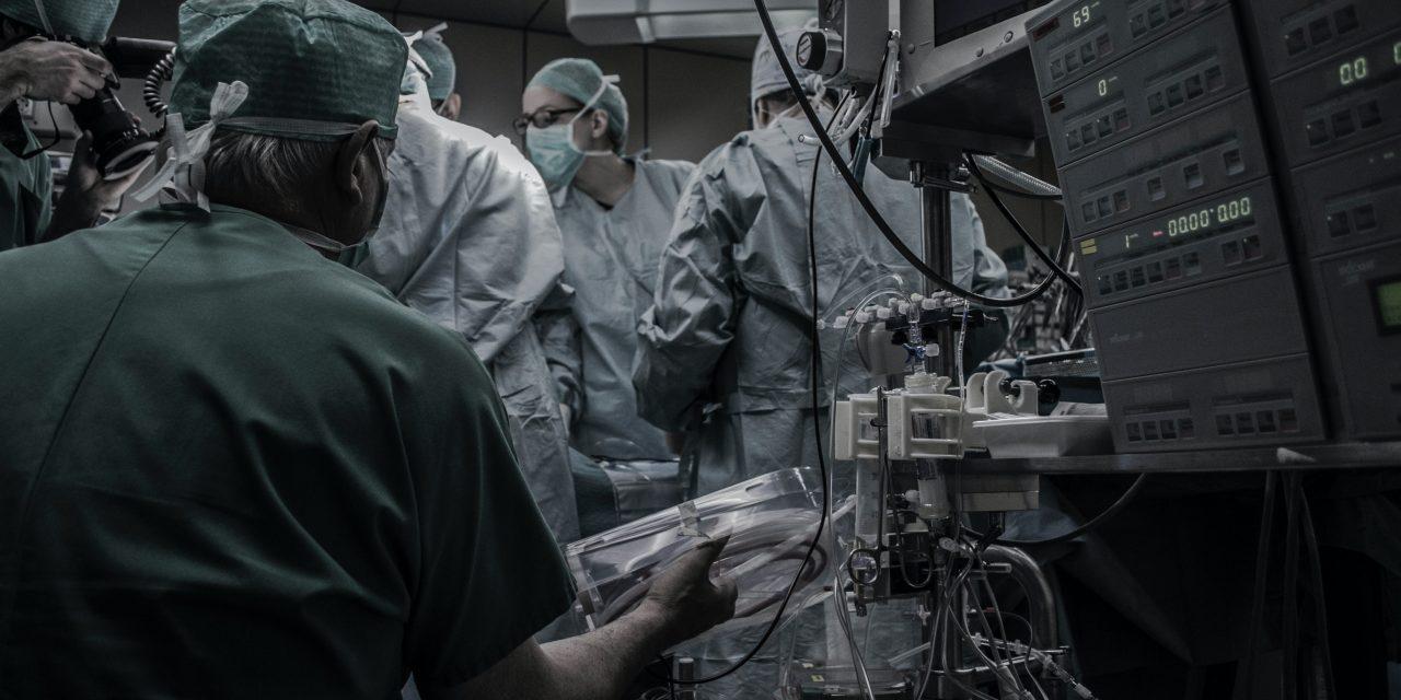 Día Nacional del Trasplante: España es líder mundial en donantes de órganos