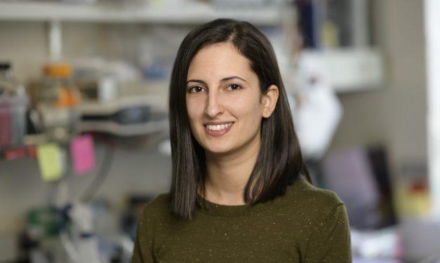Esther Sánchez de León: «Hay mucha presencia femenina en la ciencia, pero no es conocida»