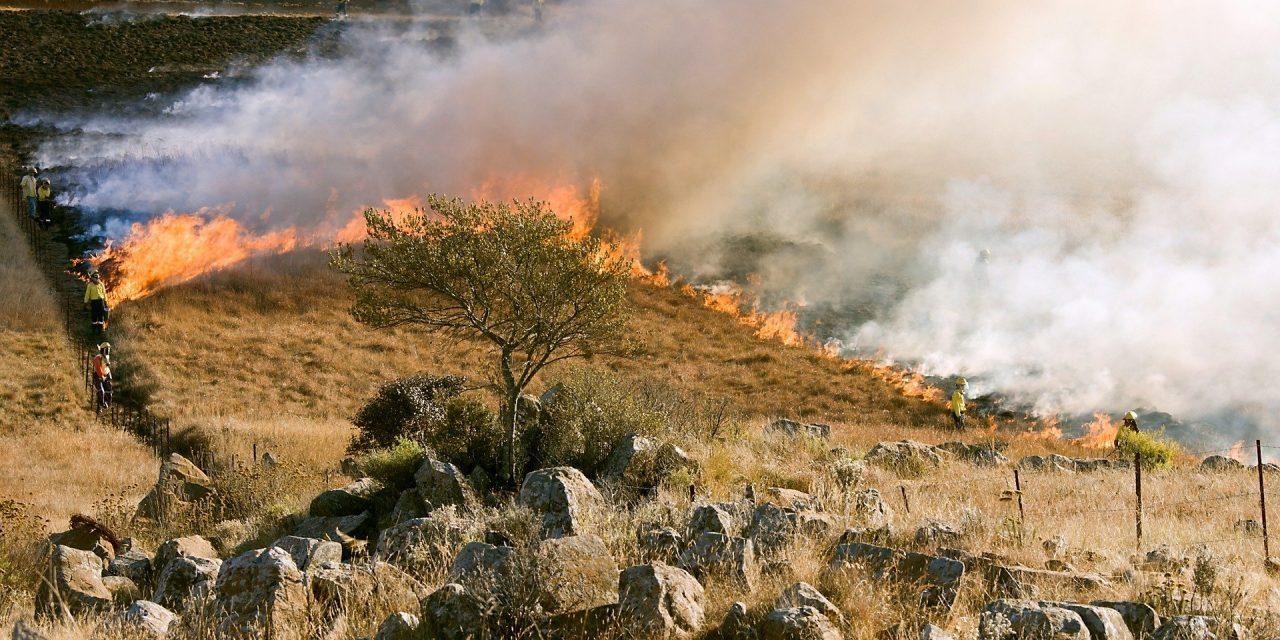 Los incendios se suceden por toda España